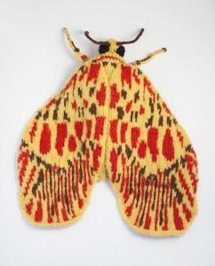 Footman Moth (Miltochrista striata)