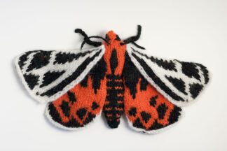 Ornate Tiger Moth (Grammia ornata)