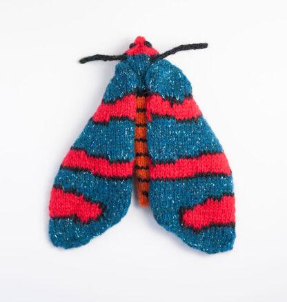Fire Grid Burnet Moth (Arniocera erythropyga)