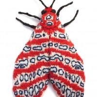 tatargina-picta-moth