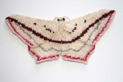 Blood Vein Moth -Timadra comae