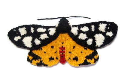 Cream Spot Tiger Moth - Arctia villica
