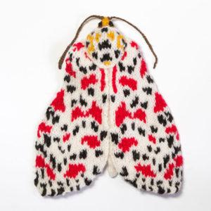Crimson Speckled Moth (Utetheisa pulchella)