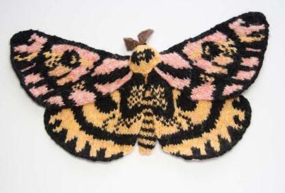 Elegant Sheep Moth - Hemileuca eglanterina