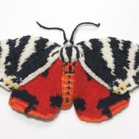 Jersey Tiger Moth (Euplagia quadripunctaria)