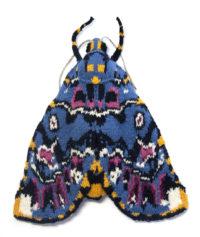 Lily Moth - Polytela gloriosae