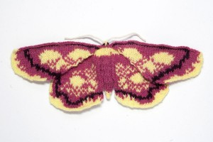 Purple-bordered gold moth (Idaea muricata)