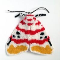 Lichen Moth (Cyana bellisima)