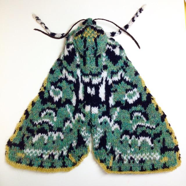 Knitted Merveille du jour moth