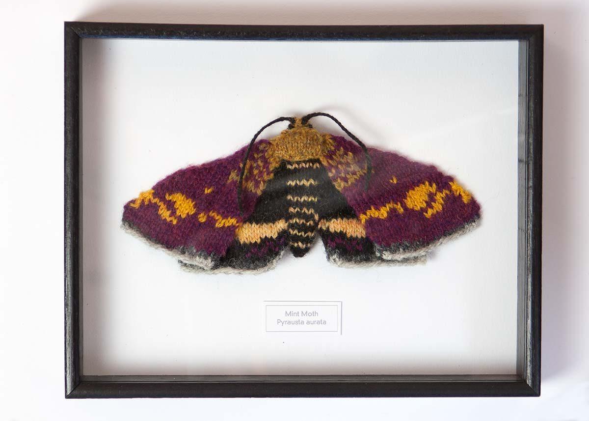 Knitted Mint Moth Framed