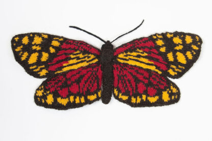 Knitted Fiery Campylotes Moth