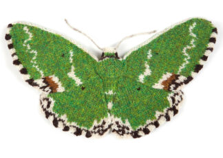 Knitted Blotched Emerald Moth