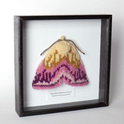 Knitted pink moth in dark frame