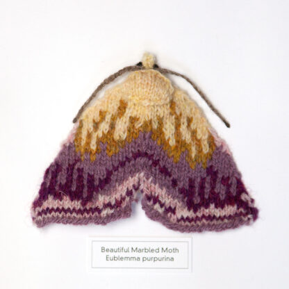Knitted purple moth