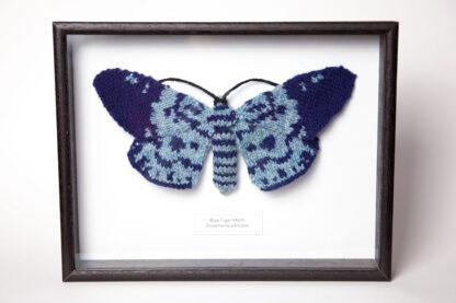 Framed Blue Tiger Moth