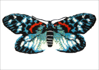 Burnet Moth - Erasmia Pulchella