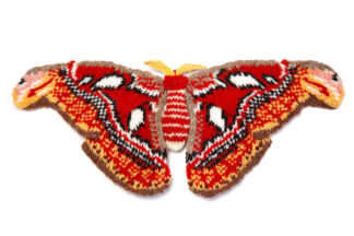 Knitted atlas moth