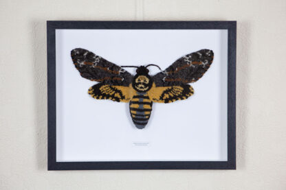framed knitted hawkmoth