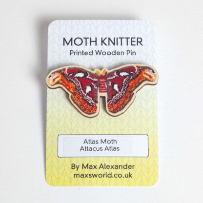 wood atlas moth pin on a backing card.