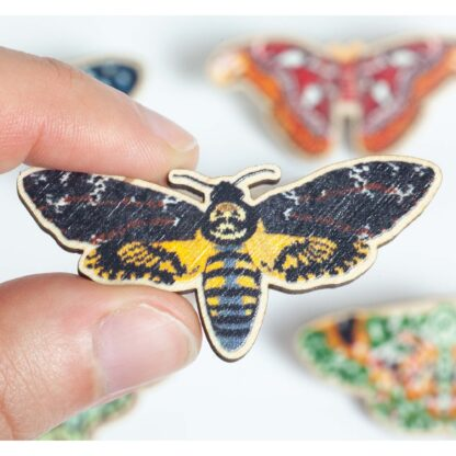 wooden pin with a print of a deaths head hawkmoth. Held on the left between a finger and thumb. Out of focus moth pins in the background.