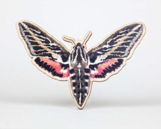 Printed moth on cut out wood
