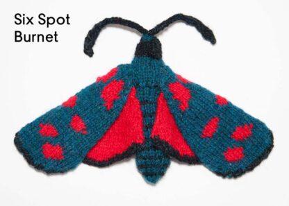 Knitted Six Spot Burnet
