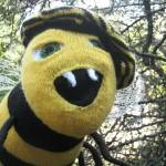 cheeky bee